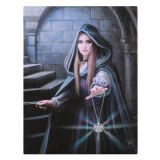 Anne Stokes Collection  - Canvas Wall Plaques/pictures